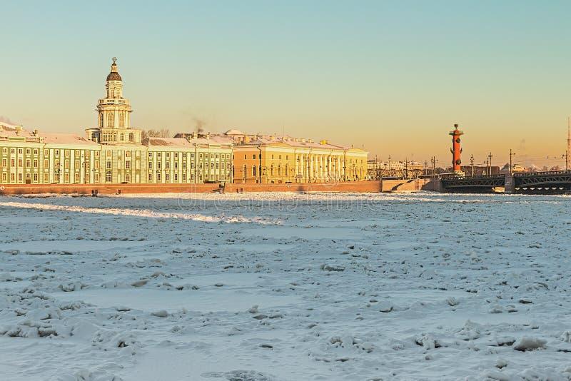 Ilha de Vasilievsky e de inverno de Kunstkammer manhã em St Petersb fotos de stock royalty free