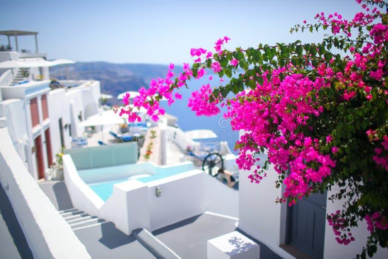 Ilha do grego de Santorini da cena da rua fotografia de stock