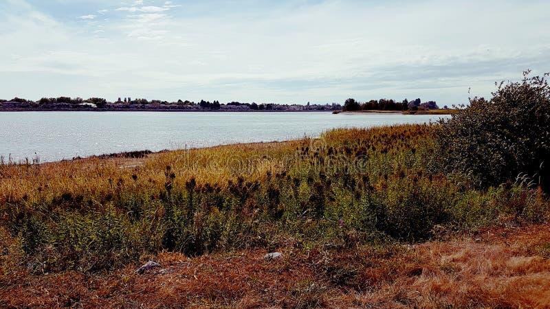 Ilha do mar de Vancôver foto de stock