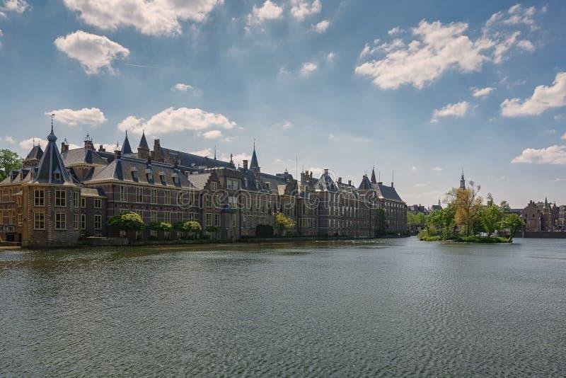 Ilha do panorama Binnenhof, e do Hofvijver coberto de vegetação com as plantas fotos de stock royalty free