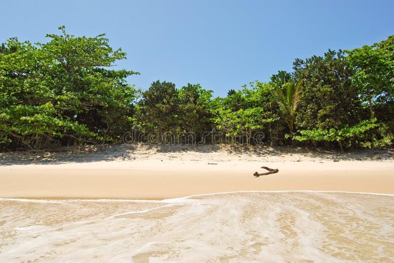 Download Ilha Grande: Plażowy Praia Lopes Mendes, Rio De Janeiro Stan, Brazylia Obraz Stock - Obraz złożonej z janela, lopes: 53776749