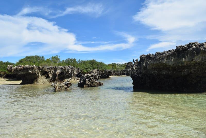 Ilha Kwale e cerco em Zanzibar foto de stock royalty free