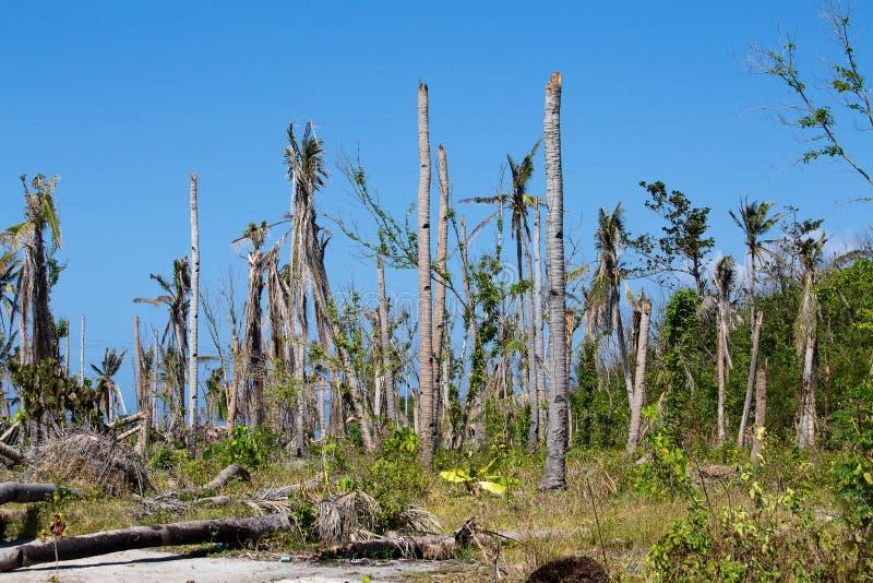 Ilha Malapascua após Typhon nas Filipinas fotos de stock