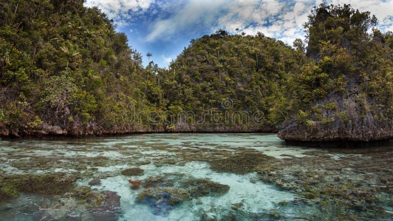 Ilha na lagoa, ampat da pedra calcária de Raja, Indonésia 01 foto de stock