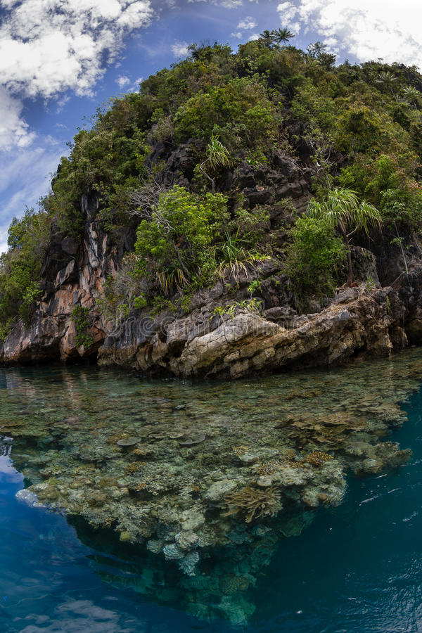 Ilha na lagoa, ampat da pedra calcária de Raja, Indonésia 03 imagem de stock royalty free