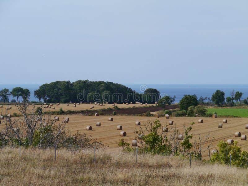 A ilha Oland e o sund de Kalmar fotografia de stock royalty free