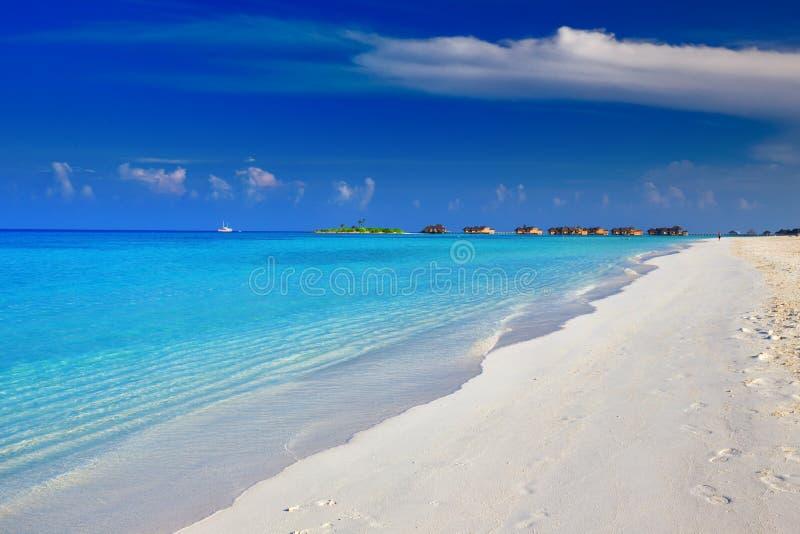 Ilha tropical com água do espaço livre de turquesa e o bungalow do overwater, Maldivas foto de stock royalty free