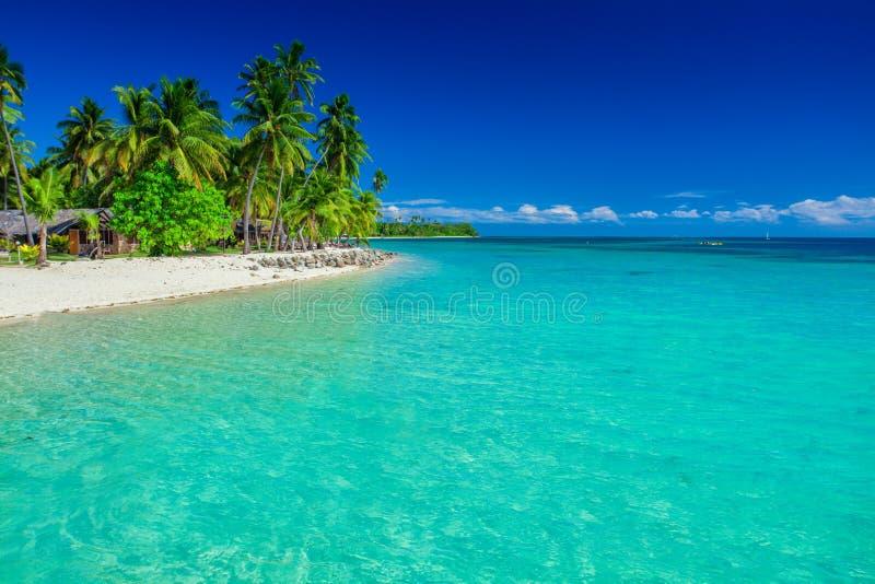 Ilha tropical em Fiji, em palmeiras e na praia fotos de stock royalty free