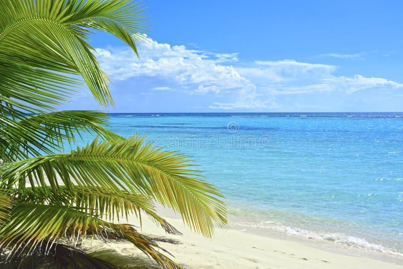 Ilha tropical, mar das caraíbas fotografia de stock