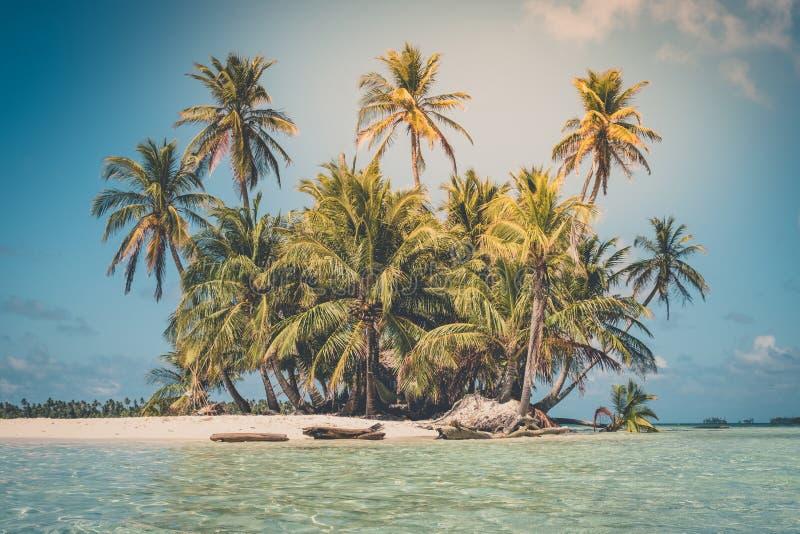 Ilha tropical - palmeira, praia e oceano imagem de stock