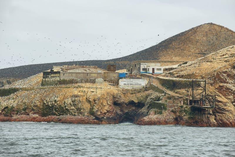 Ilhas de Ballestas no Peru imagem de stock royalty free