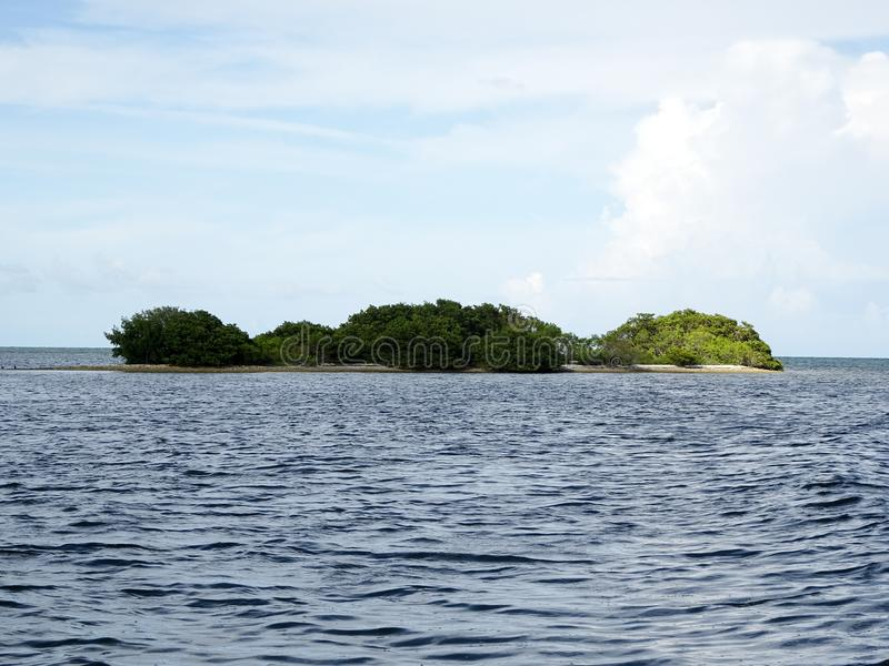 Ilhas dos manguezais e oceano aberto nas chaves de Florida fotografia de stock