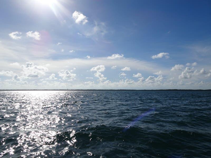 Ilhas dos manguezais e oceano aberto nas chaves de Florida fotografia de stock royalty free