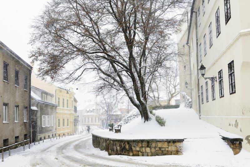 Ilirski trg, Zagreb, Kroatië stock afbeeldingen