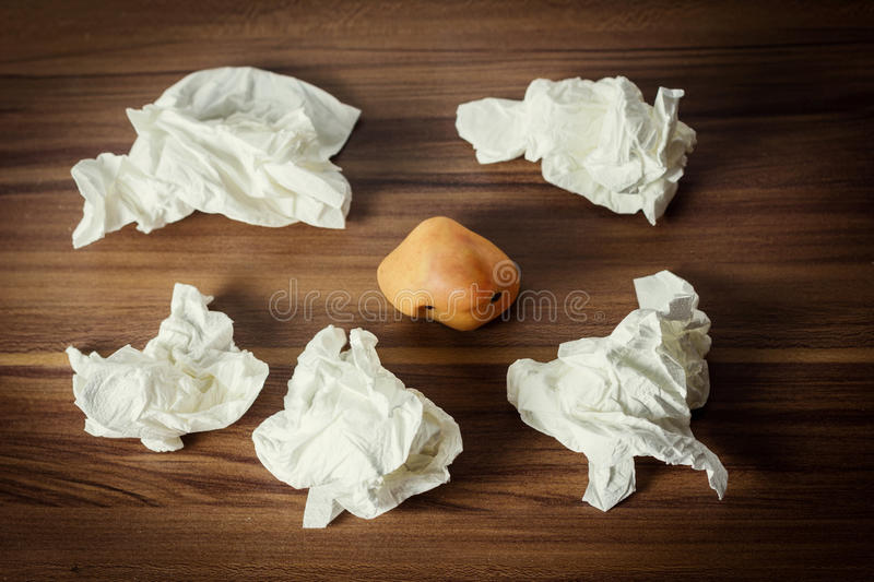 Ill nose laying on wooden laminate encircled by handkerchiefs.  royalty free stock images