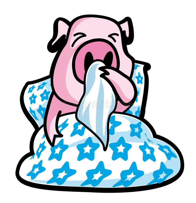 Ill pig vector illustration