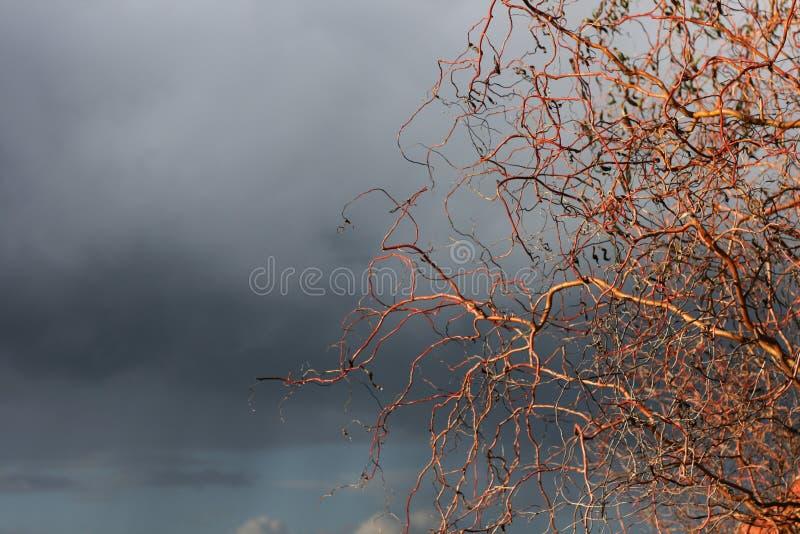 Illavarslande komma för storm arkivfoto