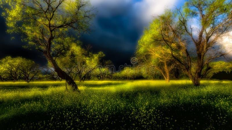 Illavarslande moln över Texas Hill Country royaltyfri fotografi