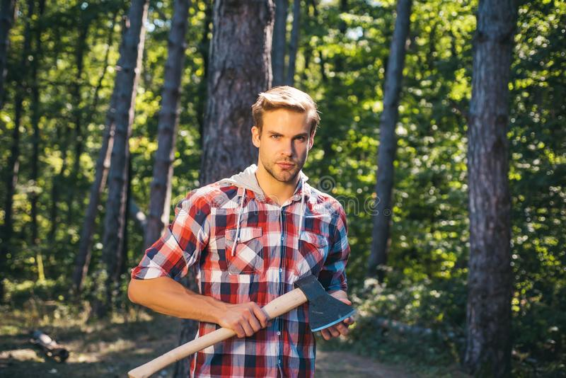 Illegal logging continues today. Logging. Agriculture and forestry theme. Strong man lumberjack with an ax in a plaid royalty free stock photo