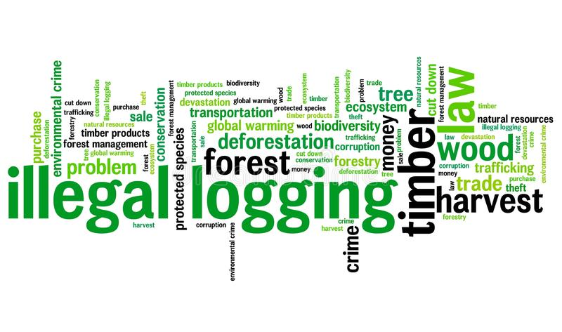 Illegal logging. Environmental issues and concepts word cloud illustration. Word collage concept vector illustration