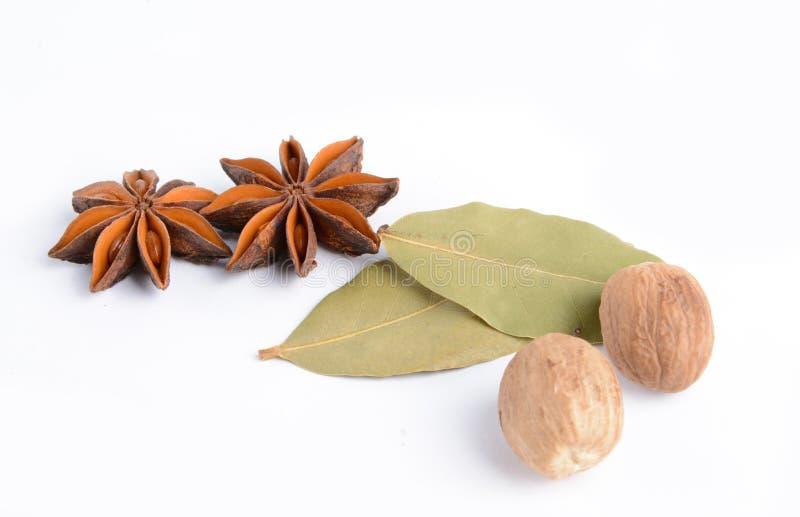 Illicium verum, anice stellato, frutta, laurus nobilis, Muscat immagine stock