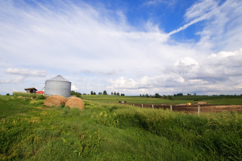 Download Illinois Field With Silo And Hay Bale Stock Photo - Image of illinois, grass: 5843900
