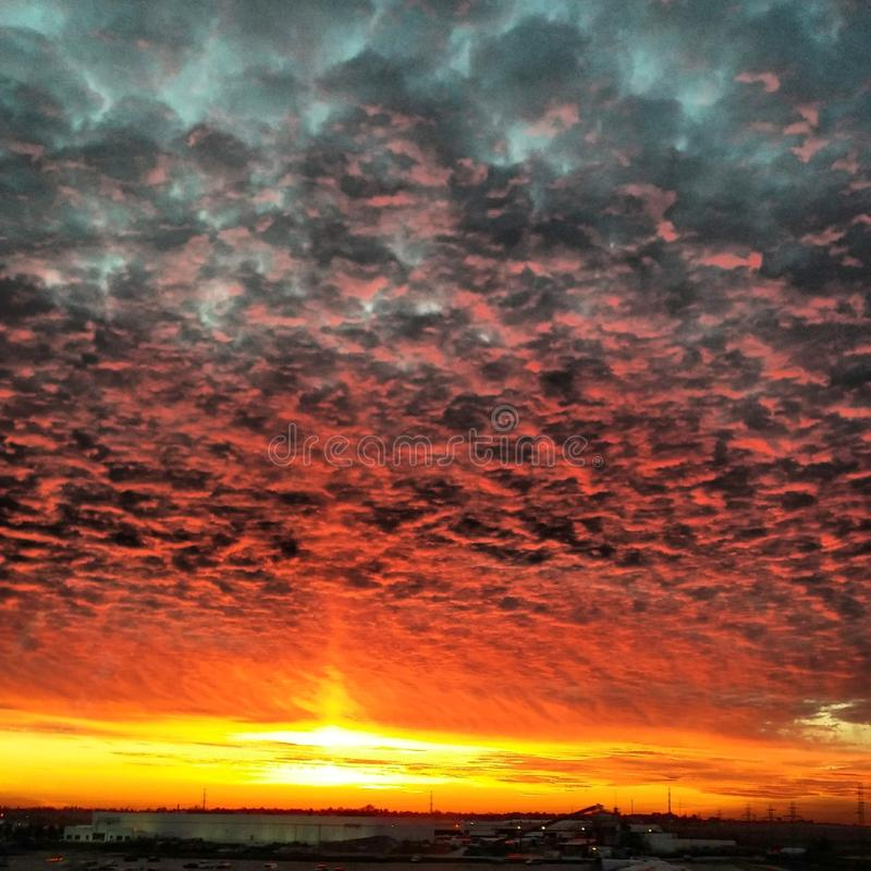 Illinois Sky on Fire. stock photo