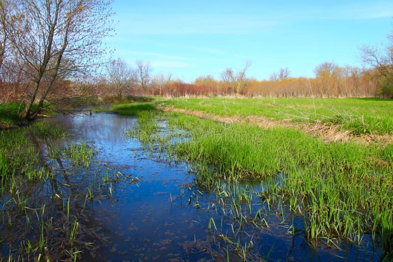 Illinois-Stauwasser stockfoto