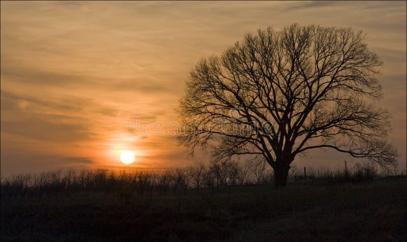 Illinois Sunset stock photo