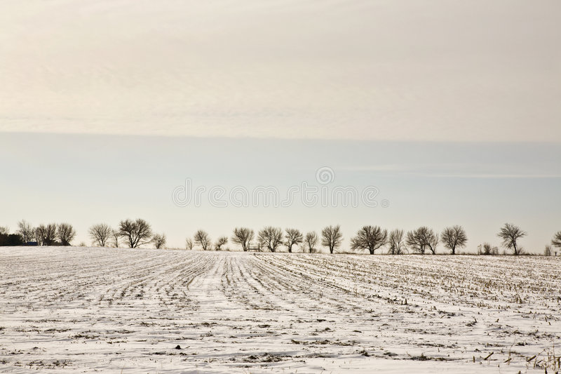 Illinois Winter Landscape stock image