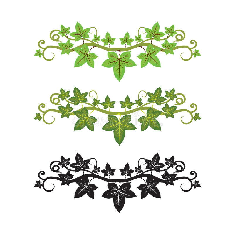 Free Illlusstration Of Ivy Plant Royalty Free Stock Photos - 12328168