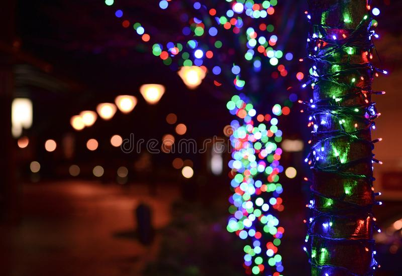 Illuminated Christmas Lights at Night royalty free stock photo