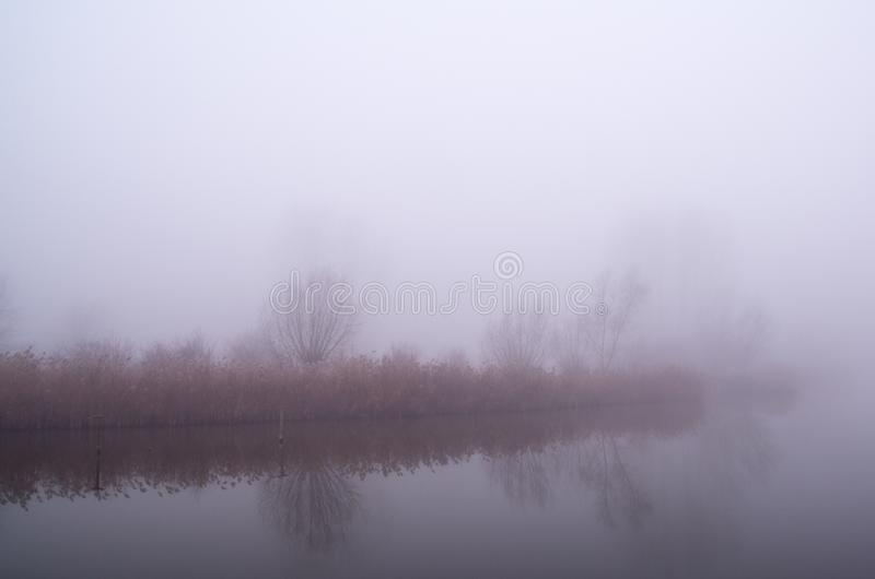 Illuminated Fog in the morning sun stock photography