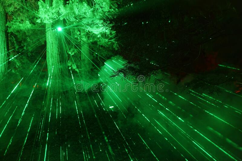 Illuminated forest at CHRISTMAS GARDEN stock photos