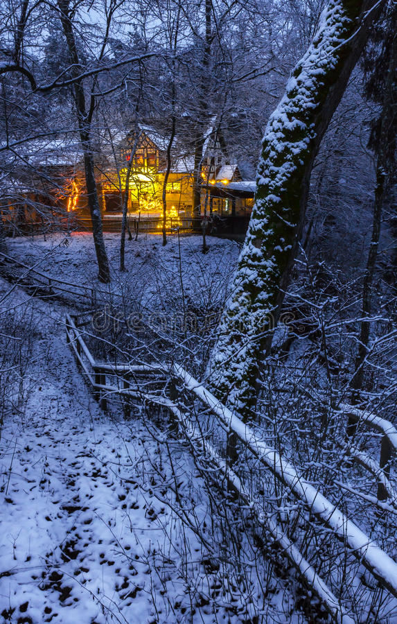 Illuminated houses- winter forest royalty free stock images