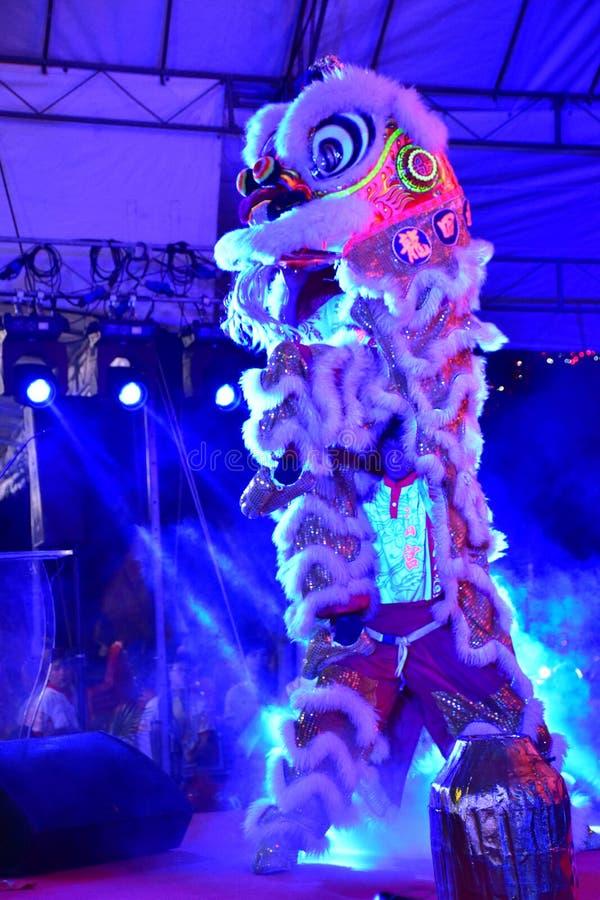 Illuminated Lion Dance royalty free stock photo