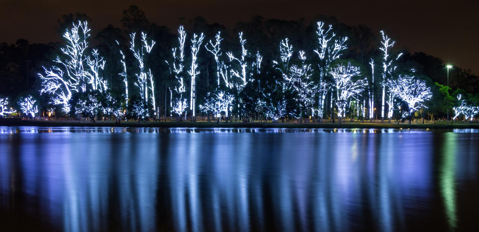 Illuminated trees for christmas. At the famous park of sao paulo city - ibirapuera - and its lake