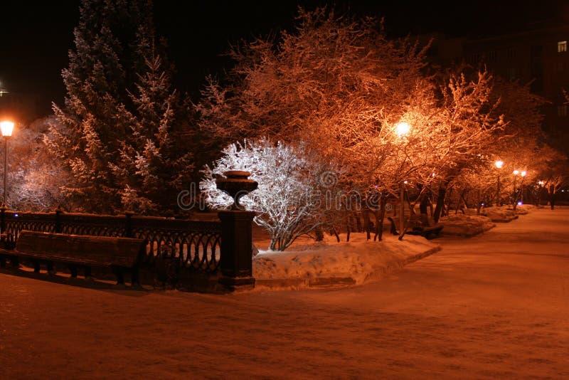 Illumination de nuit de Novosibirsk photo libre de droits