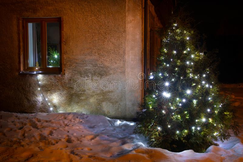 Illuminazione illuminata dell'albero di natale nel giardino di inverno fotografia stock