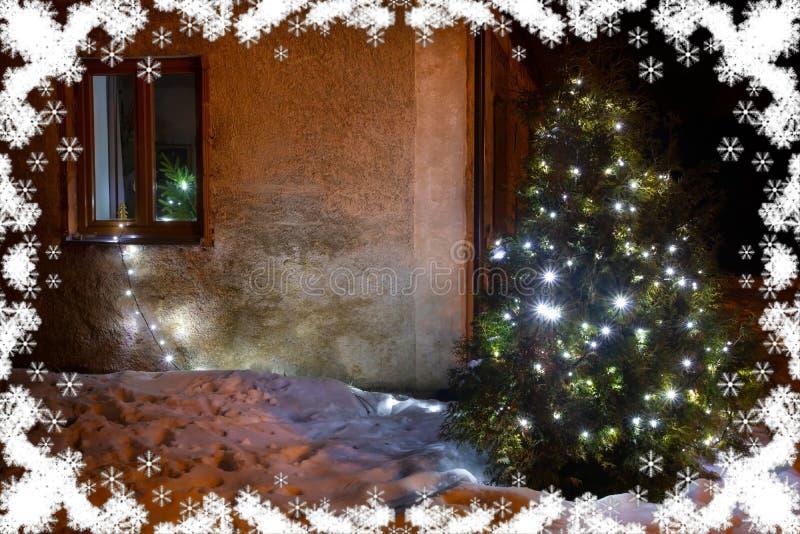 Illuminazione illuminata dell'albero di natale nel giardino di inverno immagine stock