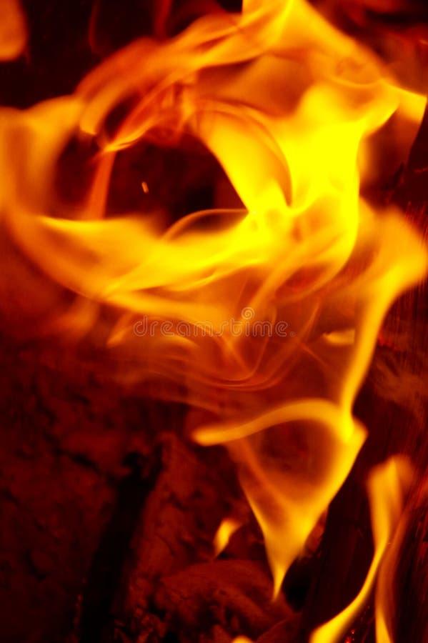 Illusion de feu de camp de fleur rose faite de flammes image stock