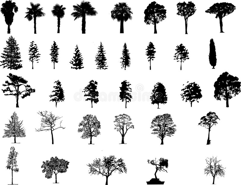 Illustartion das árvores ilustração stock