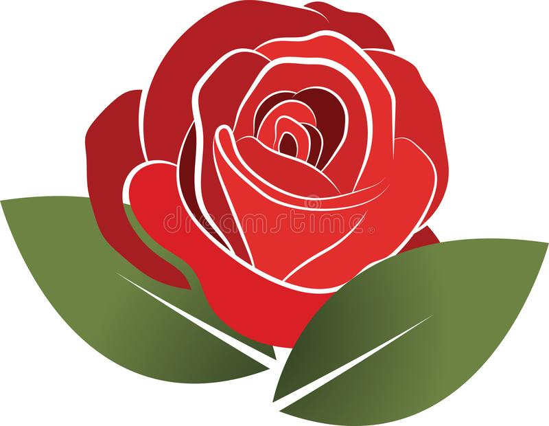 Illustraion del vector del logotipo de la rosa del rojo ilustración del vector