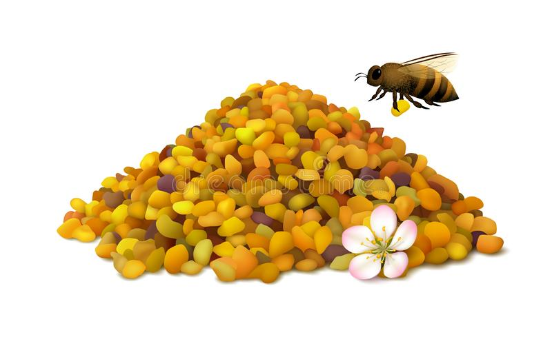 Illustrated bee pollen grains with flower and flying honeybee isolated on white. Pile of bee pollen grains, flying honeybee and apple flower on white background stock illustration