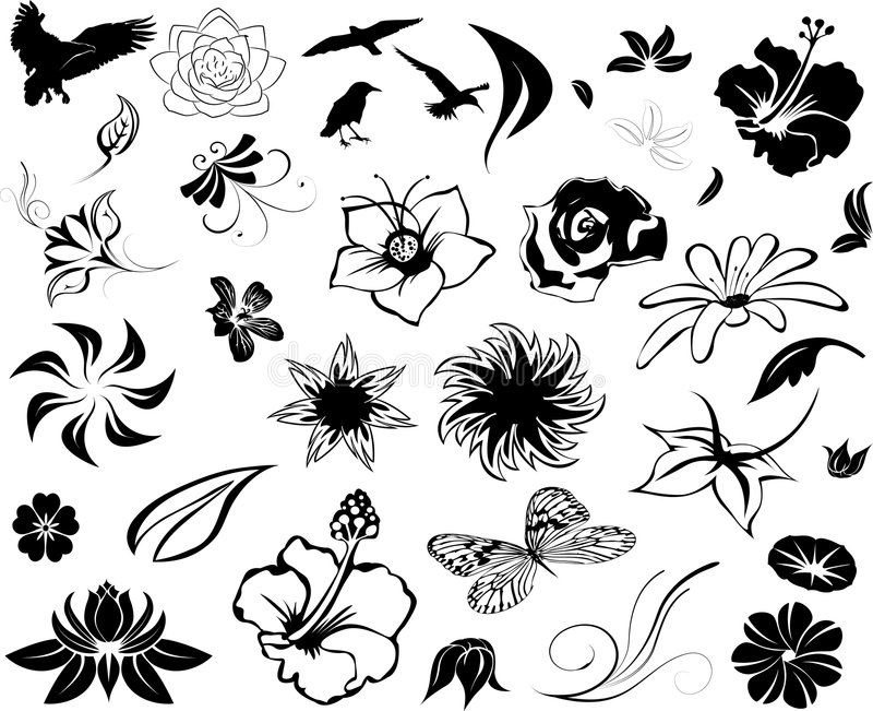 Illustrated Floral Designs. An illustrated background with a set of floral designs in black color, isolated on white background royalty free illustration