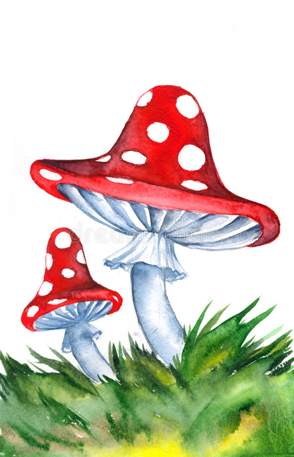 Illustrated mushrooms. An illustration of two mushrooms with red polka dot tops vector illustration
