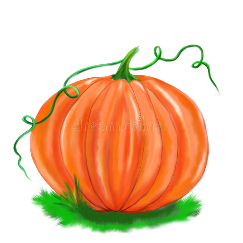 Illustrated pumpkin isolated halloween stock photography