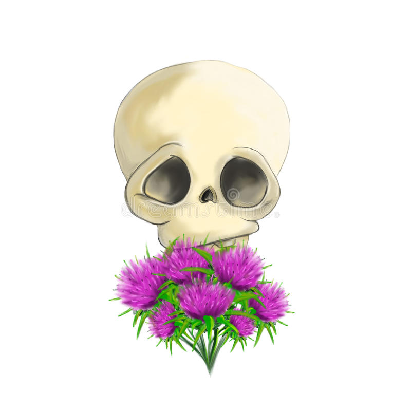 Illustrated skull with thistles royalty free stock image