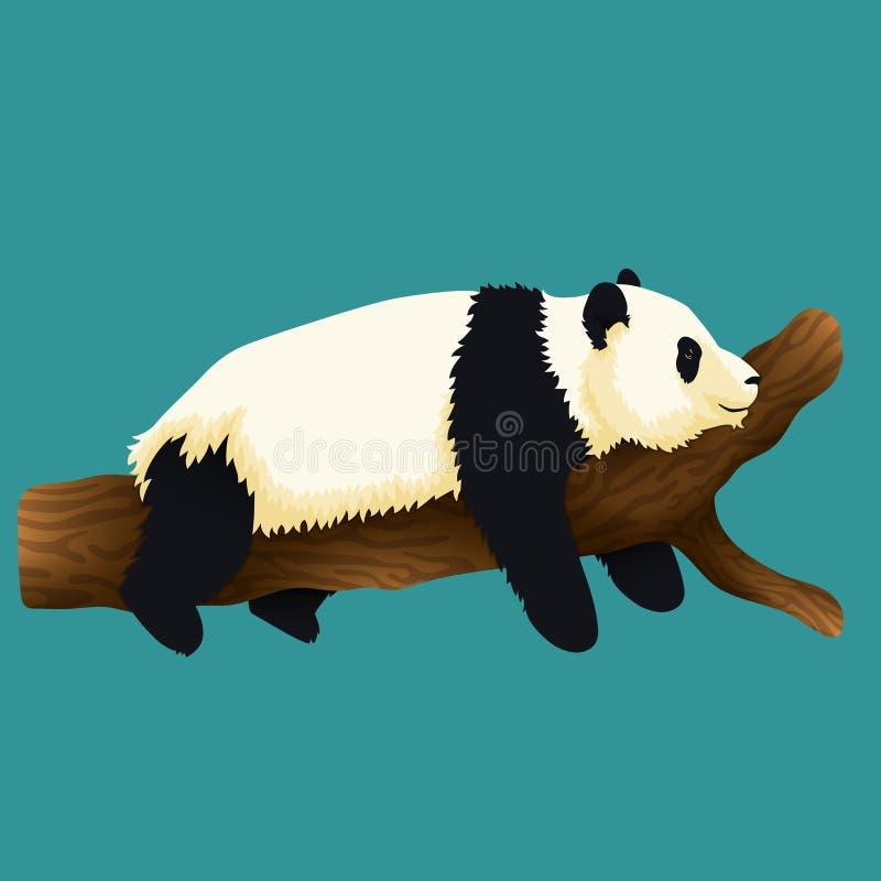 Illustratie die van aanbiddelijke reuzepanda op een boom liggen zwart-wit draag Kwetsbare species stock illustratie