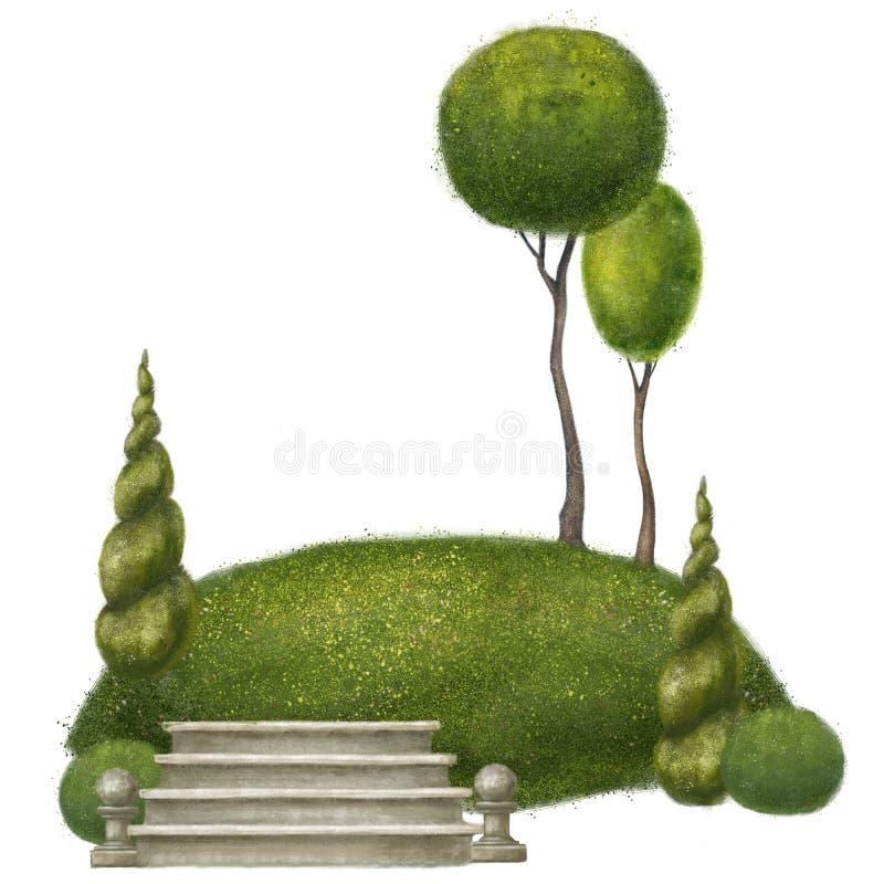 Illustratie met bomen Natuurlijke samenstelling van het park Ge?soleerdj op witte achtergrond Het ontwerp van het landschap stock afbeelding